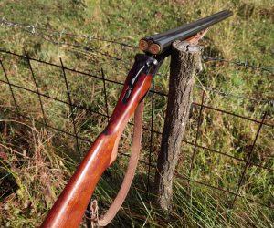 Odabir sačme za lov sitne divljači